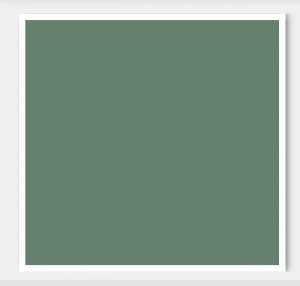 WebsterGreen_benjaminmoore_birkman